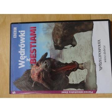 """___ DVD """"Wędrówki z bestiami"""" cz.5 BBC"""