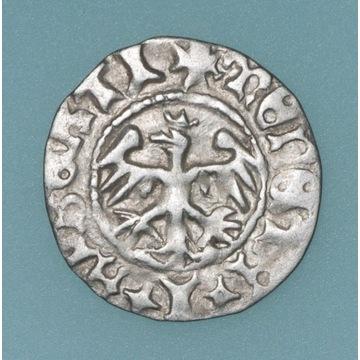 Jan I Olbracht, półgrosz 1492–1501, Kraków