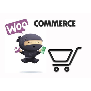 Sklep Internetowy WordPress + Woocommerce RWD