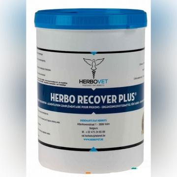 Herbo recover plus - Szybko stawia gołębie na nogi