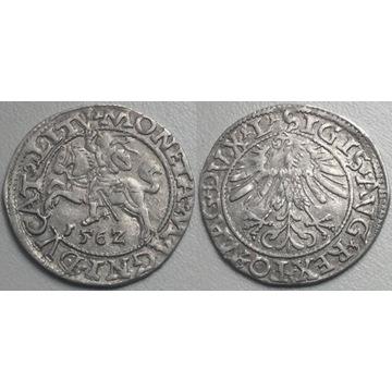 półgrosz, 1562, Wilno L/LITV -bardzo ładny-