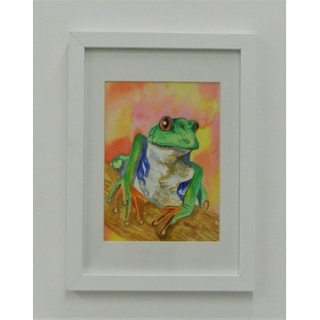 watercolour Red Eyed Tree Frog Painting