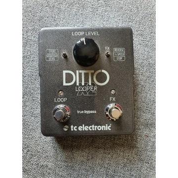 TC Electronic Ditto X2 Looper  (DARMOWA WYSYŁKA !)