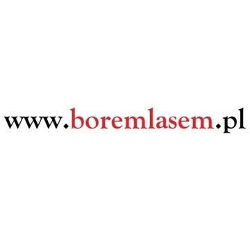 boremlasem.pl domena www podróże las survival