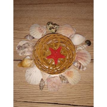 Muszle morskie koszyczek ozdoba dekoracja