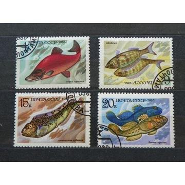 77# Rosja  ryby. 4 zn