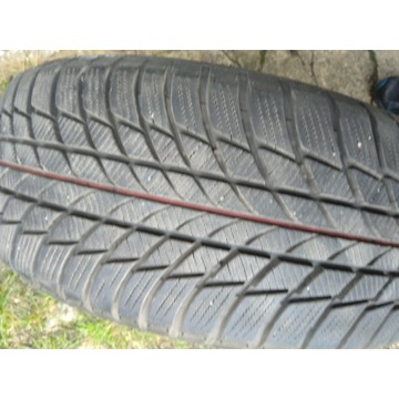 Opony zimowe Bridgestone DriveGuard