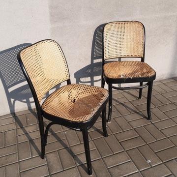 Krzesła gięte z rattanem. Radomsko, Fameg, Thonet