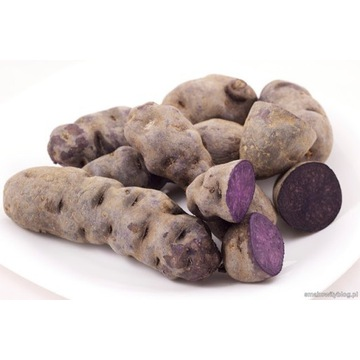 Ziemniaki fioletowe, truflowe, vitalotte 5kg