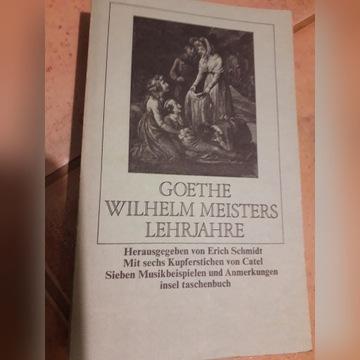 Wilhelm Meisters Lehrjahre, Goethe