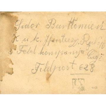 1916 - kamuflażowy stempel okręgowy IX-1068