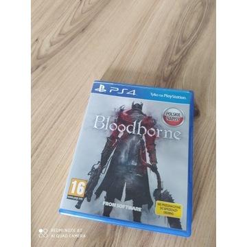 Bloodborne pl