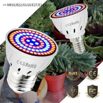Żarówka GROW 80 LED do uprawy roślin E27