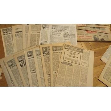 Solidarność Dolnośląska, opozycyjne pismo 1980-81