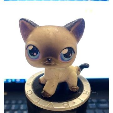 Littles Pet Shop LPS Kot Kotek shorthear figurka