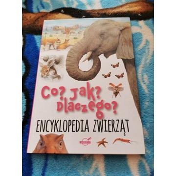 Encyklopedia zwierząt, co jak dlaczego?