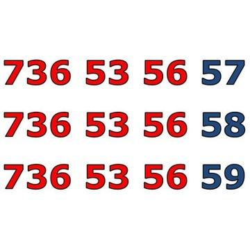 736 53 56 5X ŁATWY ZŁOTY NUMER STARTER X 3