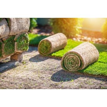 Trawa w rolce, trawa z rolki - trawa naturalna