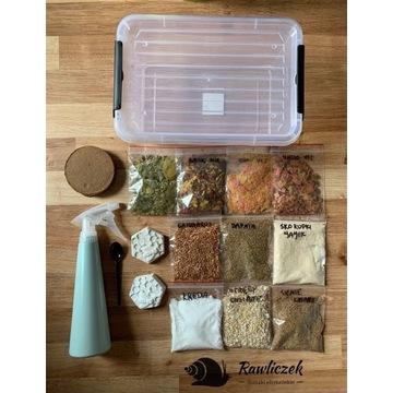 Jedzenie dla ślimaka, pojemnik box sepia, zestaw