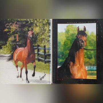 """ARABIAN HORSE WORLD"" nr 1/2001, konie arabskie"
