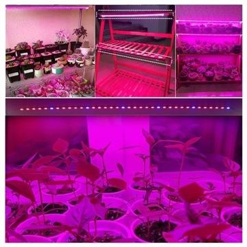 Led uprawa roślin