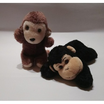 Małpki