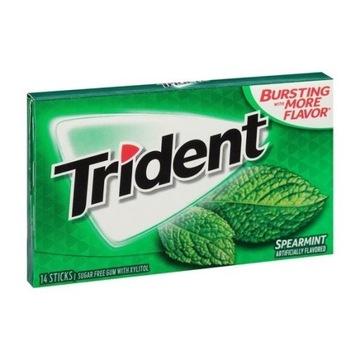 Guma Trident Spearmint 14 szt. USA