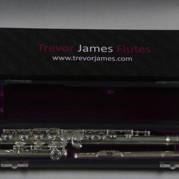 FLET POPRZECZNY TREVOR JAMES TJ10x 3005EW