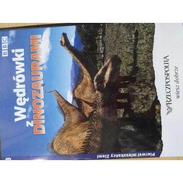 """___ DVD """"Wędrówki z dinozaurami"""" cz.3 BBC"""
