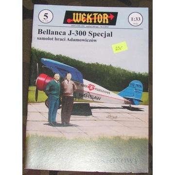 WEKTOR - Bellanca J-300 Specjal
