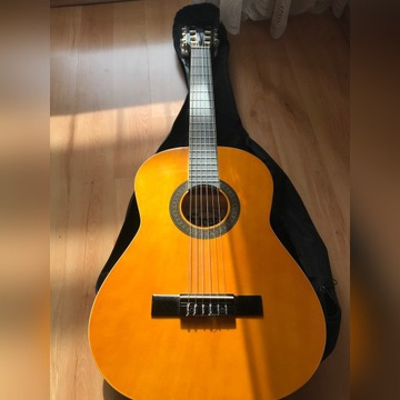 Gitara klasyczna Siesta By Aria, stroik, pokrowiec