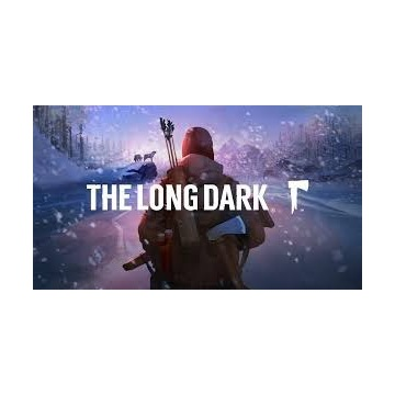 The Long Dark - gra PC