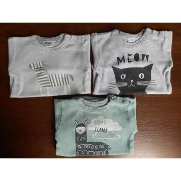 PINOKIO body niemowlęce zestaw 3 sztuki-rozmiar 62