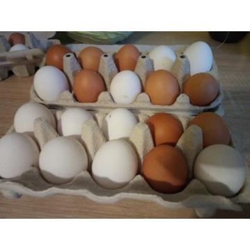 Wiejskie jaja