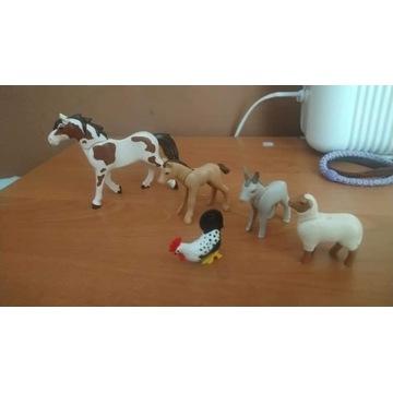Playmobil koń, Źrebak