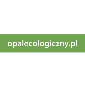 Domena internetowa opalecologiczny.pl