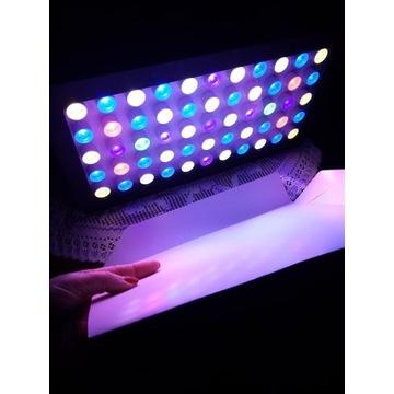 Lampa Oświetleniowa WIFI LED do Akwarium