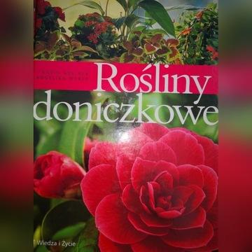 Rośliny DONICZKOWE album poradnik