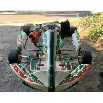 Gokart Tony Kart Racer EVX TM Racing k11 100c 30KM