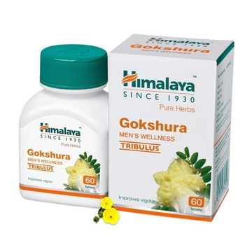 Himalaya Gokshura Men's Wellness Pure Herbs