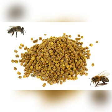 Pierzga pszczela - chlebek pszczeli