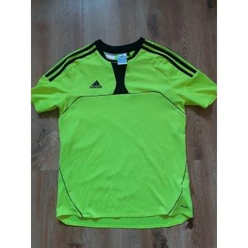 Koszulka sportową adidas na trening w-f