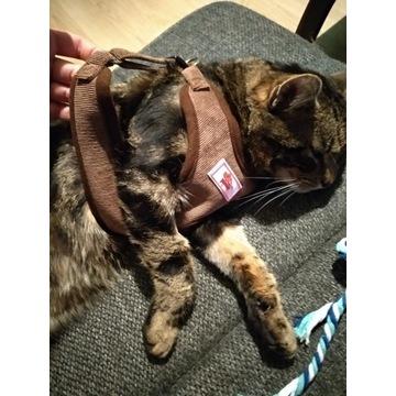 Szelki dla kotka kota brazowe M L