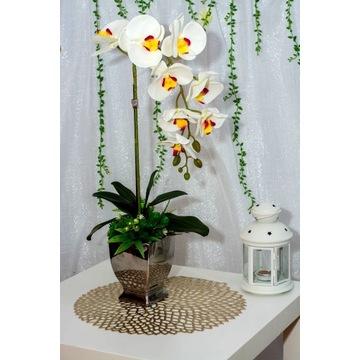 Przepiękny biały storczyk srebrna donica