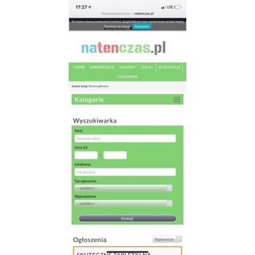 Sprzedam domenę natenczas.pl z portalem