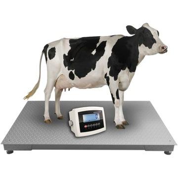 Waga rolnicza Inwentarzowa do zwierząt świń 3t 5t