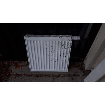 Kaloryfer panelowy głowicą termostatyczną 50x50x7