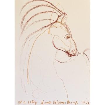Grafika Koń rysunek obraz