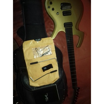 gitara parker95flay de lux