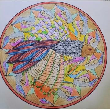 Kolorowanka Mandala
